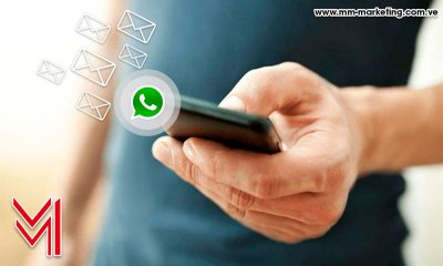 whatsapp- marca - mm-marketing